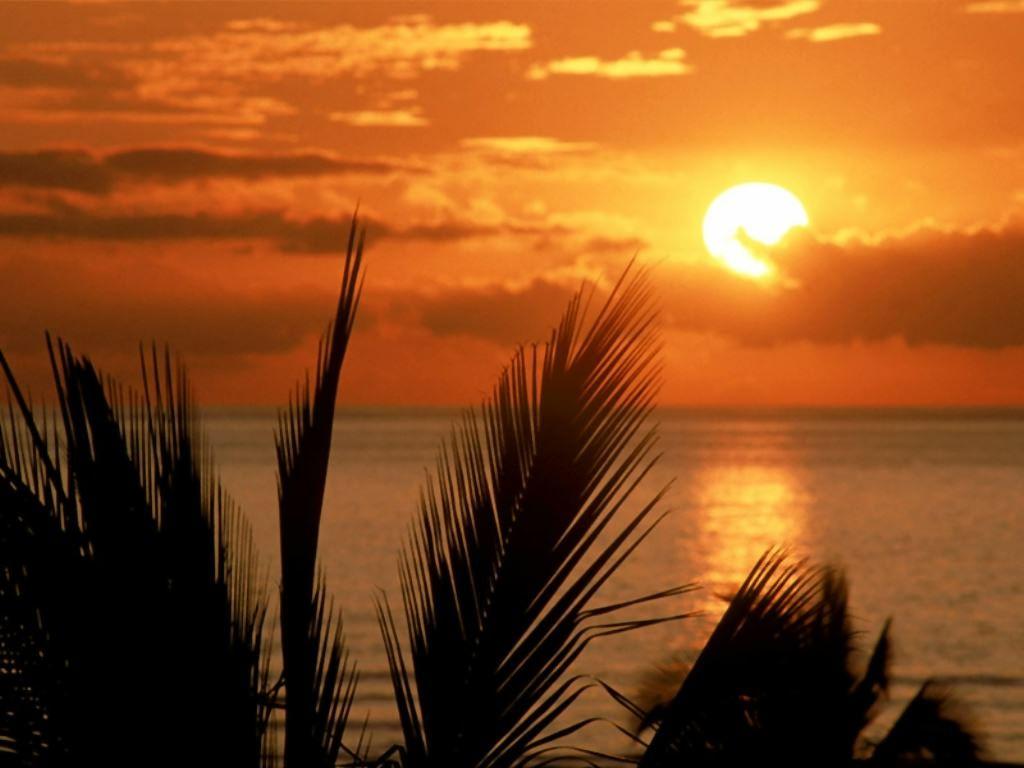 Fond d ecran coucher de soleil for Ecran photo